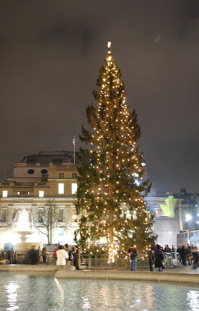 The Trafalgar Square Christmas Tree (c) Laura Bittner - Flickr Creative Commons
