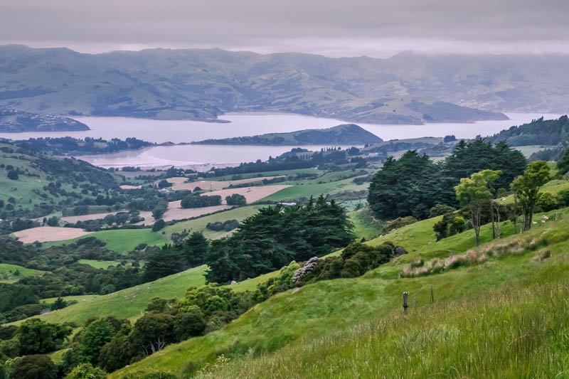 View heading towards Akaroa