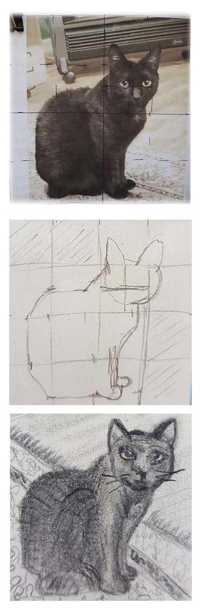 cat photo to cat sketch
