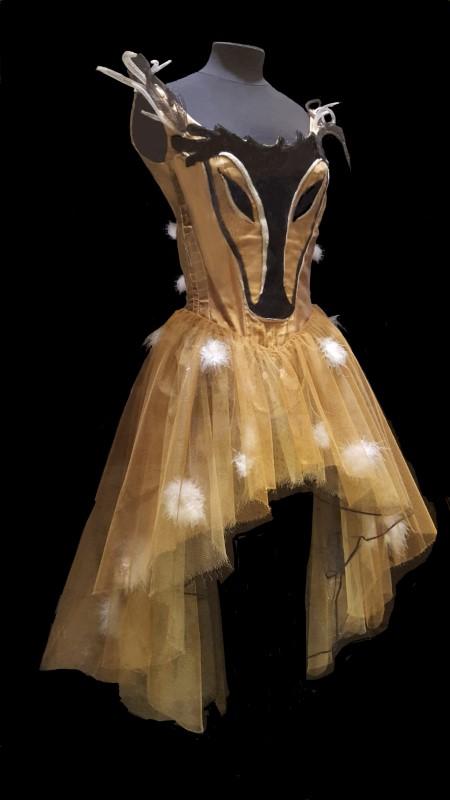 Ballet Costume from Palais Garnier in Paris